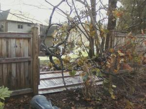 Storm Sandy took our fence