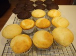 Made cupcakes!
