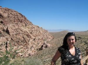 2003 in Nevada