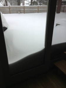 View from sliding door in living room @8AM.