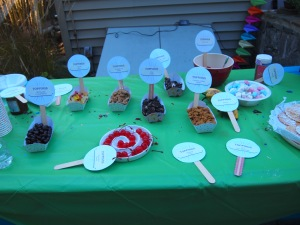 The Sundae Table!  Everything with a sign.  We served vanilla, chocolate, mint choc chip and sorbet (for those with allergies).  Everyone could have a cup of yumminess!