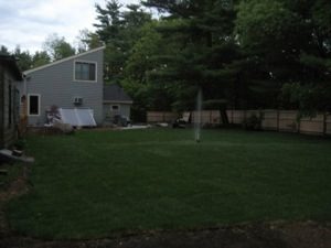 We rolled out grass ourselves! A shot from middle of the yard.