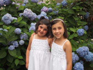 Before heading out to dinner, couldn't resist another hydrangea and girls pic.  :)