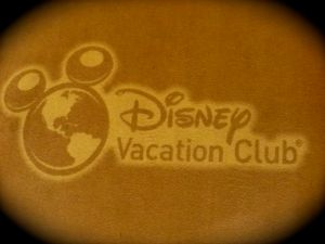 We stayed at a DVC for both parts of our trip.