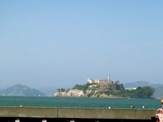 From the right side of the Sea Lions! Alcatraz!