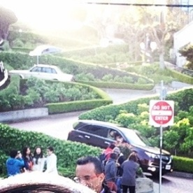 Then we walked up to Lombard St. The crookedest street!