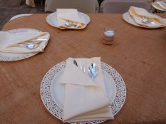 Loved this whole place setting not only cause it was sweet, but FULLY DISPOSABLE (except the napkin)~