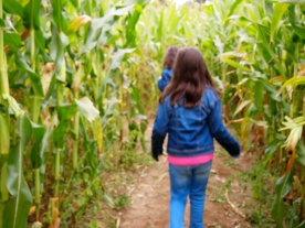 Our first corn maze together. :)