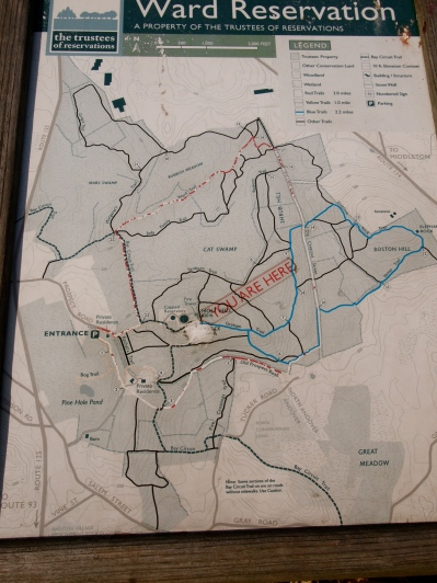 Ward Reservation Map