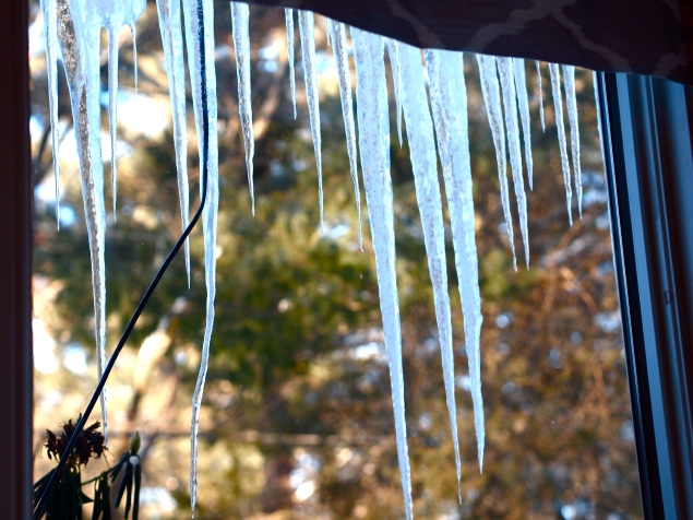 I love the icicles outside the kitchen window .. they look like shark's teeth!