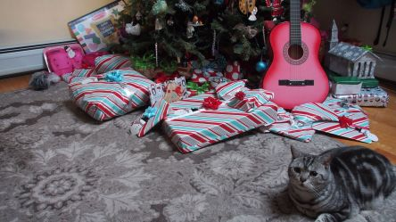 Guarding the gifts..