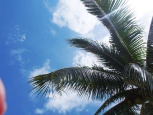 My view from the lounger