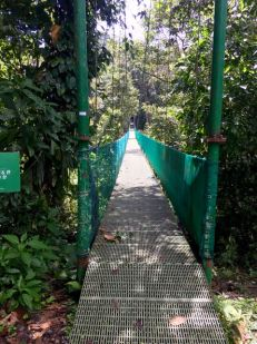 Cable bridges...these scared the pants off me.. SERIOUSLY