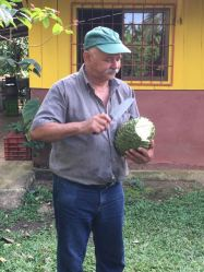 This was the abuelo, he was the funniest man. Spoke only Spanish and hand picked every fruit for us to try. i loved him!