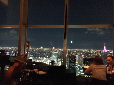 New York Bar view