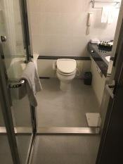 The Japanese electronic toilets- these things are the bomb and I forgot how much I love the Japanese toilets.. Keio Plaza Tokyo Room 3260
