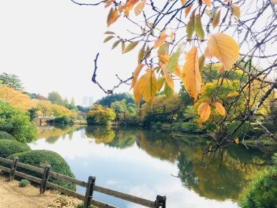 falltime in japan