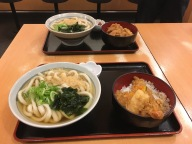 Udon noodles and a tendon