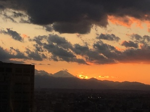 View from hotel at sunset, keio plaza hotel