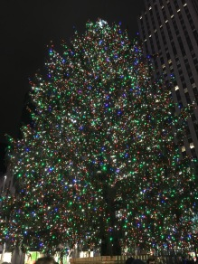 The Rockefeller Ctr Tree from the back