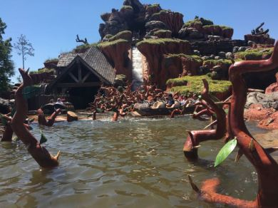 Yup, I don't ride one ride out of all the parks.. Splash Mtn. Do not poke fun!