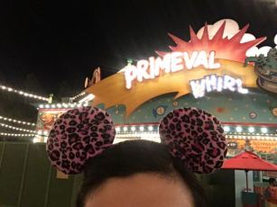 And then the girls rode Primeval Whirl twice together