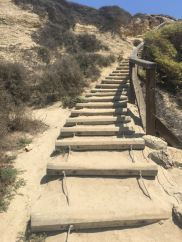 Crystal Cove State Park- Steps