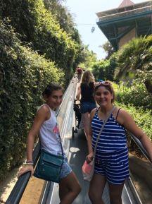 San Diego Zoo- Talking tram up to Bashor Bridge area/Treetops