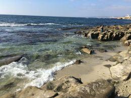 La Jolla Cove- isn't it spectacular?