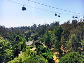 Skyfari San Diego Zoo
