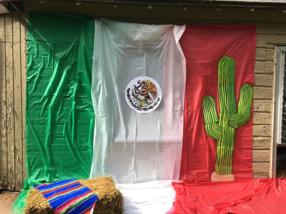 Mexico themed photo backdrop