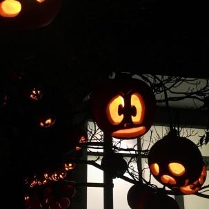 Ecotarium Great Pumpkin Festival