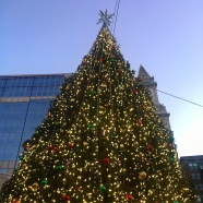 Faneuil Hall Tree
