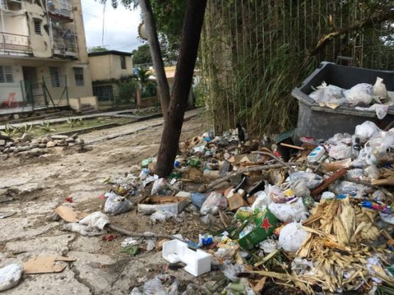 Trash in collection areas