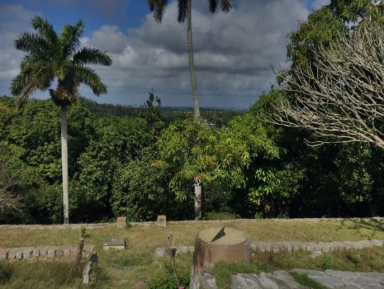 Hemingway House- Cuba - view from back of the house