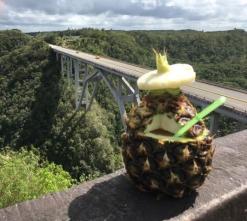 bacunayagua bridge pina colada