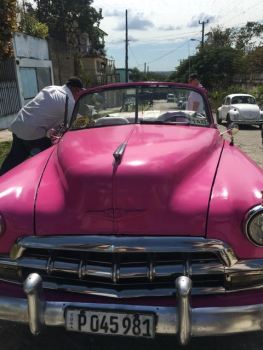 The tour guide and the pink car
