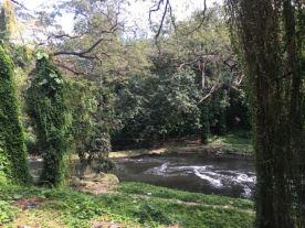 'river'